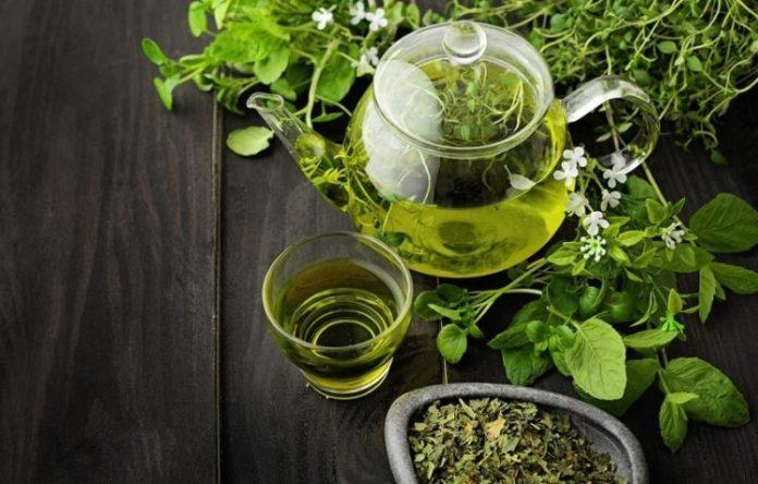 bevande infusi con erbe aromatiche e piante medicinali ricette naturali