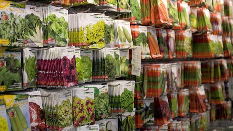bustine sementi pronte alla semina riproduzione gamica