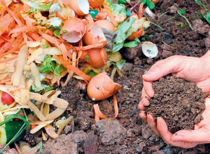 compost compostaggio di rami foglie erba residui alimentari di cucina orto giardino