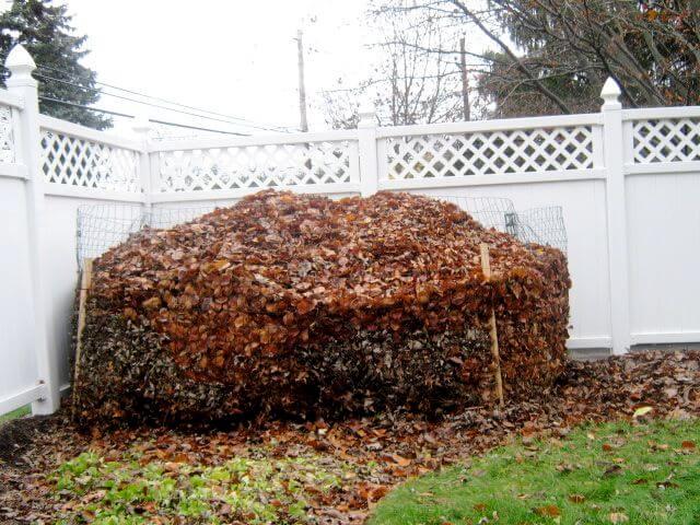 compost fogliame foglie orto giardino