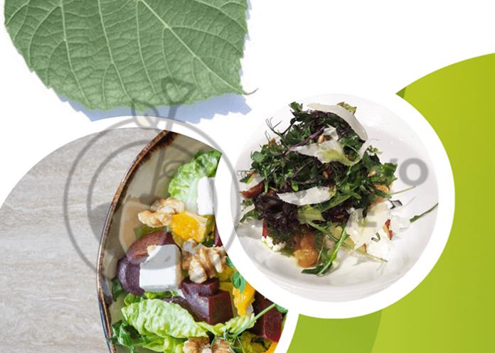 insalata di foglie di tiglio ricetta